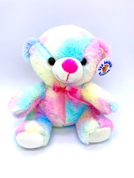 23cm Plush Colourful Bear With Ribbon