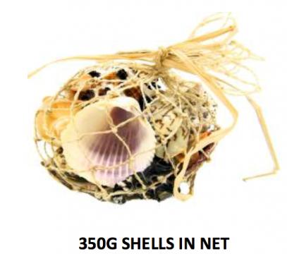 350g Bag of Shells