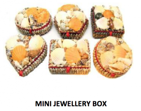 6 Assorted Mini Shell  Box
