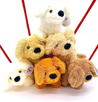 6 Astd Plush Dog With Lead