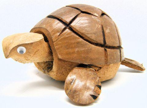 Coconut Nodding Turtle WD511