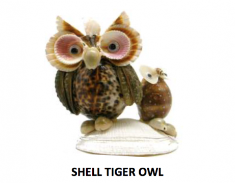 Shell Tiger Owl