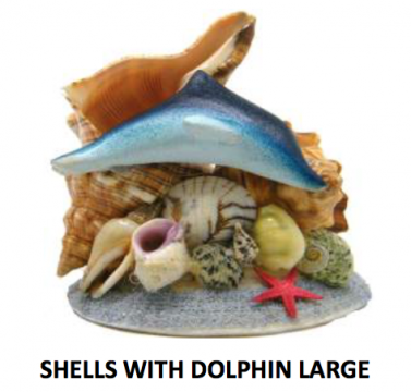 Shells with Large Dolphin