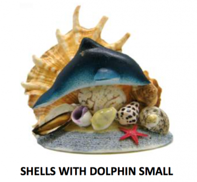 Shells with Small Dolphin