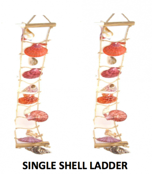 Single Shell Ladder