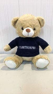 Cleethorpes 30cm Plush Bear & Jumper