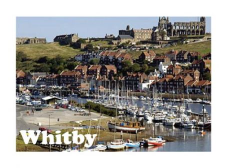 Whitby Harbour & Abbey Metal Magnet
