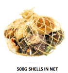 500g Bag of Shells