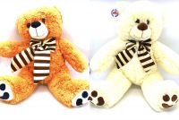 60cm 2 Assorted Plush Bear With Scarf