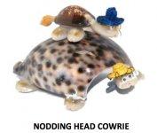 Nodding Head Turtle & Baby
